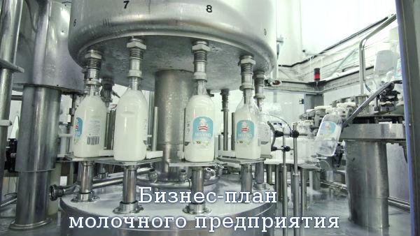 Бизнес-план молочного предприятия